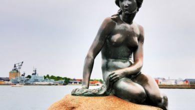 Photo of Kylling og københavn