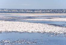 Photo of Nyd havet på fridagen